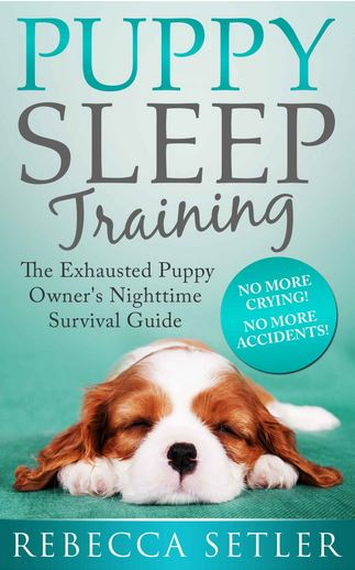 teach puppy sleep night